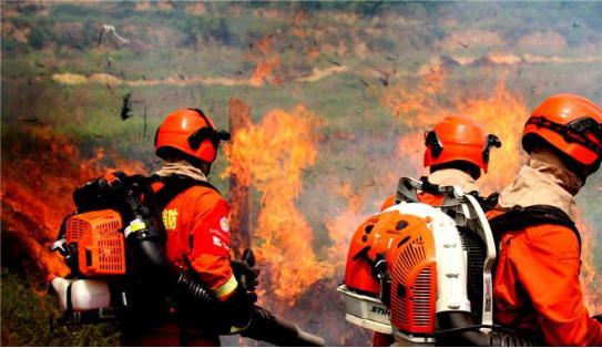 甘肃消防开展森林草原灭火演练,加强应对突发山火能力