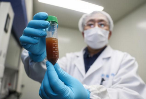 维护社会秩序与和谐稳定,公安部将严打制售假劣抗疫类药品疫苗