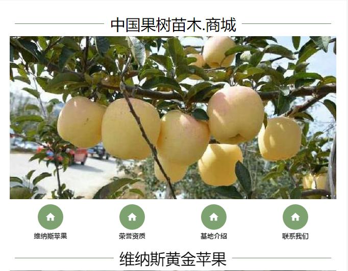 中国果树苗木.商城