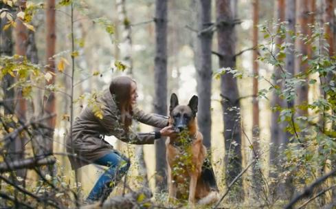 美国第一例感染新型冠状病毒的狗死亡是在6月份宣布的。