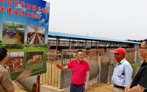 甘肃高台:特色产业有助于脱贫奋斗小康社会