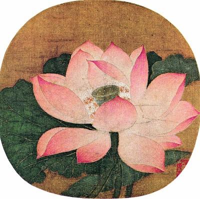 画中体现出了清雅芙蓉的美感