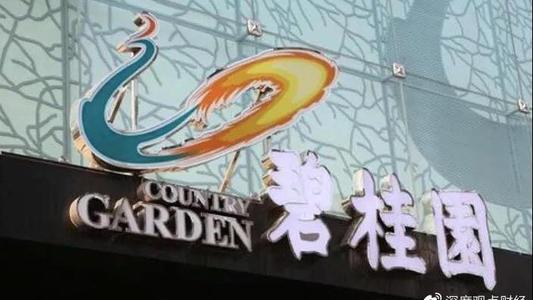 碧桂园:以23.1亿拿下义乌一商住地 楼面价16215元/平米