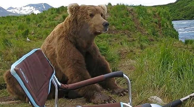 俄罗斯人钓鱼的时候,一只熊突然过来,静静地坐着,看着他钓鱼