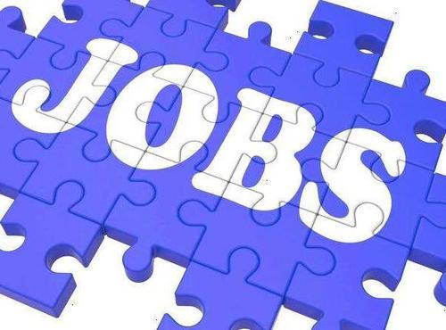 """就业和人生无需被""""定义"""""""