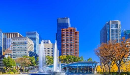 今年东京欣赏银杏的最佳10个景点,你到场几个?哪个最美?