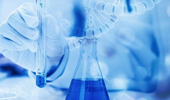 """癌症的另一个致命弱点!科学家通过关闭与细胞核的""""门""""有选择地杀死癌细胞"""
