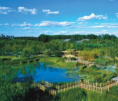 北京城市绿心森林公园正式开放