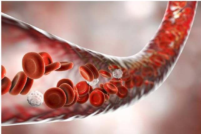 澳大利亚的新研究可能有助于败血症的治疗