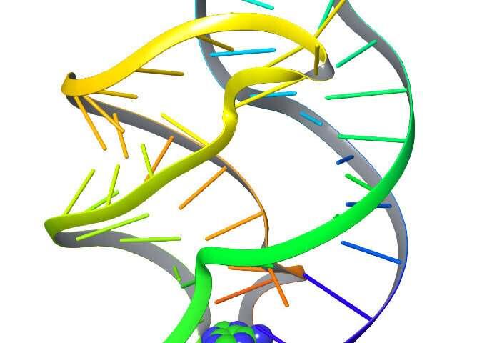 研究人员使用人工智能语言工具来解码分子运动