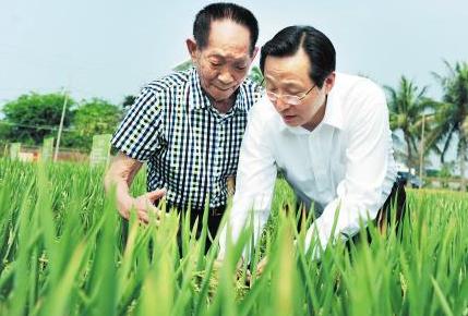 韩长赋:使得水稻产量稳定控制在2亿吨以上