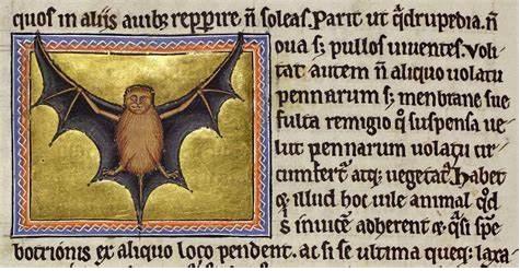 虚拟现实与现实之间的中世纪动物寓言集