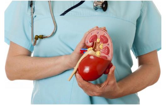 实验性药物非那农延缓糖尿病肾病在临床试验中的恶化