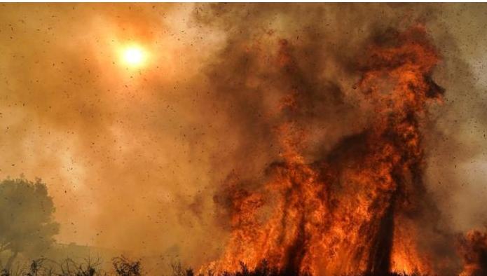 美国南加州的野火!约10万居民被要求紧急撤离