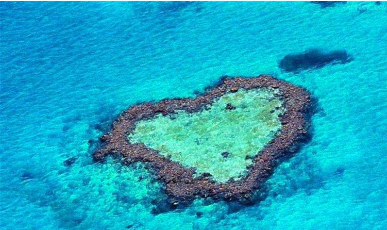 澳大利亚大堡礁面临生态危机