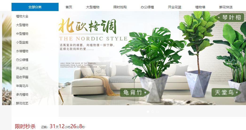 韩城绿植花卉网是薛总注册的平台!