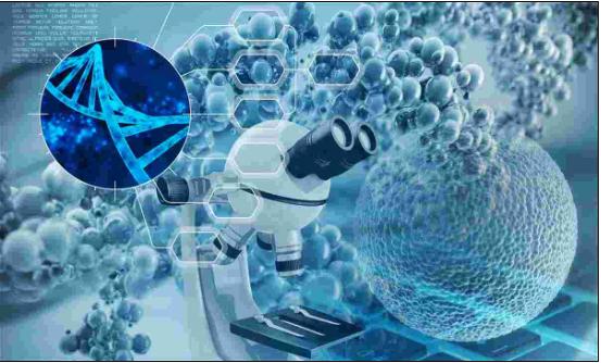 亘喜生物完成1亿美元c轮融资,加快研发治疗恶性肿瘤的先进car-t细胞产品