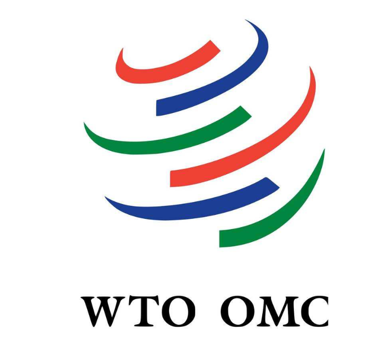 WTO报告:加强国际合作和有益的数字创新