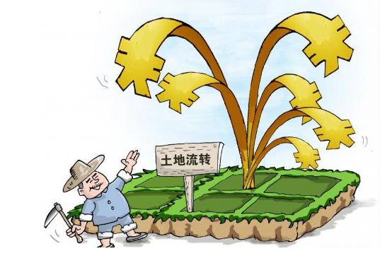 二轮土地承包到期后再延迟30年, 专家建议进一步承认农民地权