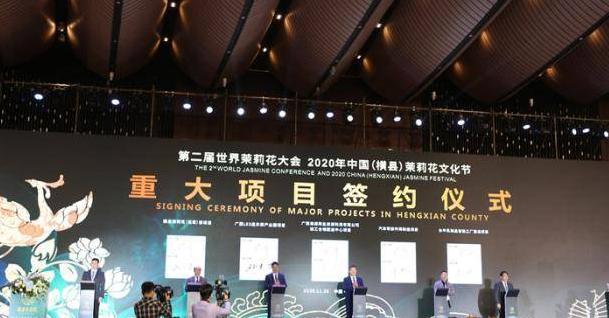 今年世界茉莉花大会开幕, 加快国际产业合作步伐