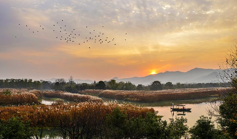 """""""十三五""""我国新增湿地面积三百多万亩 ,国家湿地公园有899处"""