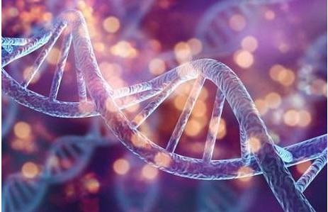 """挑战""""RNA世界""""假说,地球上的第一个生命是由RNA-DNA混合产生的"""