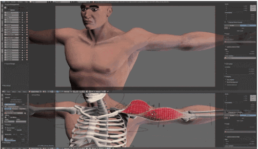 3D打印软机器人可用于人工肌肉