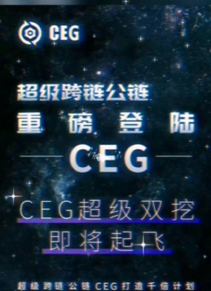 CEG国际市场领导扶持